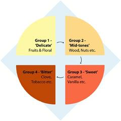 Four Coffee Flavour Groups