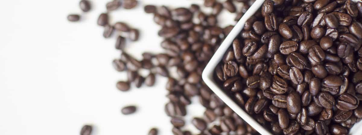 coffee bean quality bean to cup machine