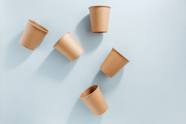 fully biodegradable cup