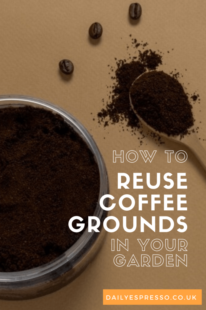 How to reuse coffee grounds in garden