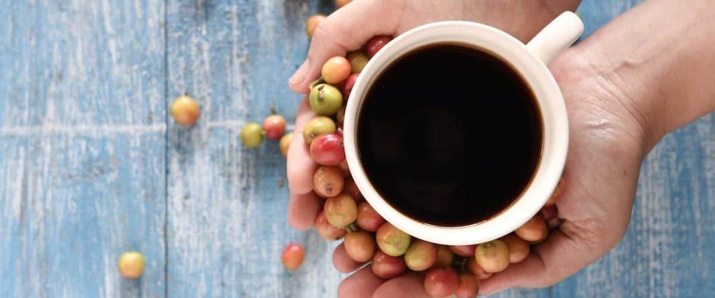 Is Coffee Vegan