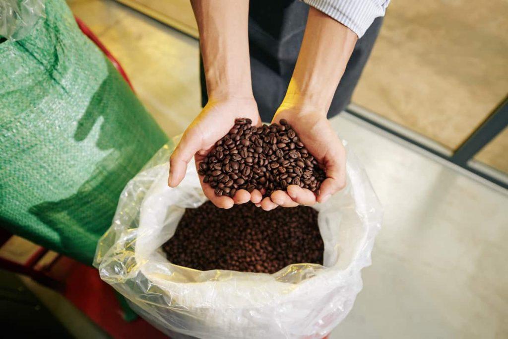 Best Coffee In World How Coffee Is Graded