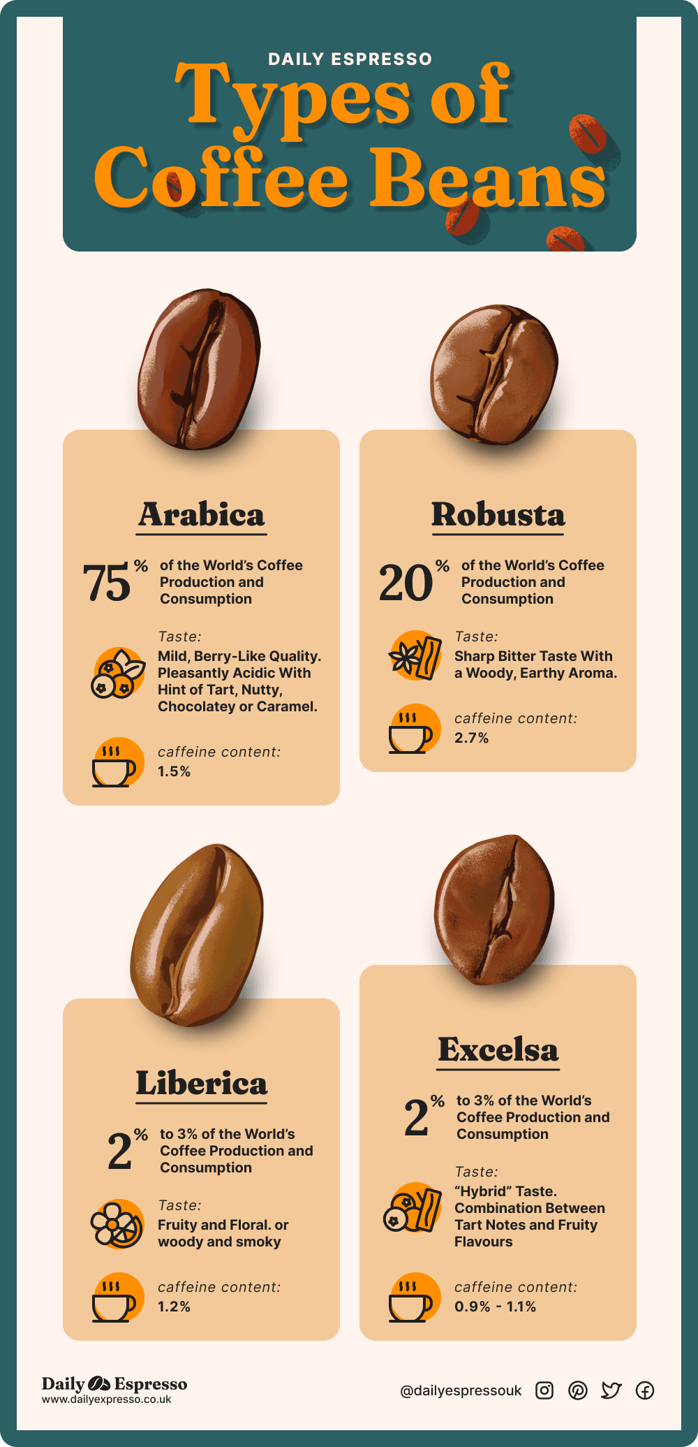 types of coffee beans infographic